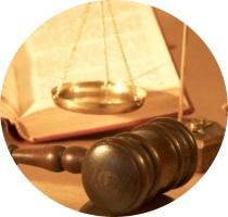виды апелляционных жалоб